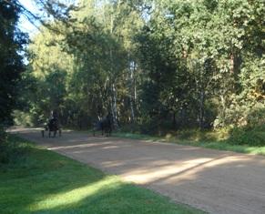 paardenrenbaan